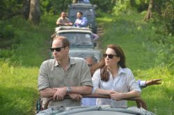 Will-and-Kate-on-Safari-India
